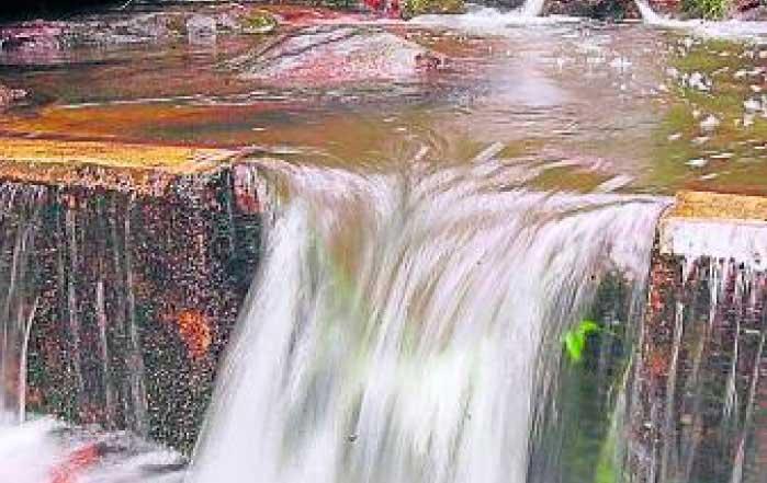 Modelo económico y protección del agua